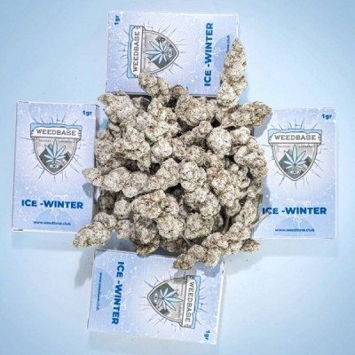 Weedbase Ice Winter ± 50% 1gr