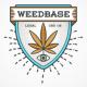 Weedbase Ice Winter ± 50% 1gr